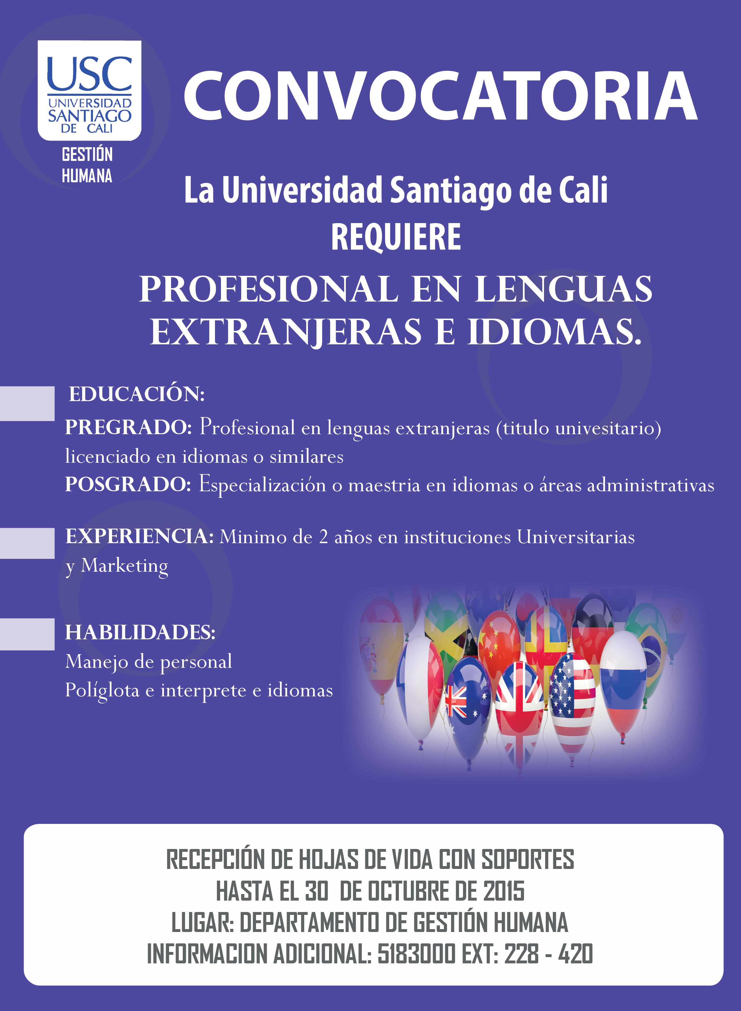 PROFESIONAL EN LENGUAS EXTRANJERAS
