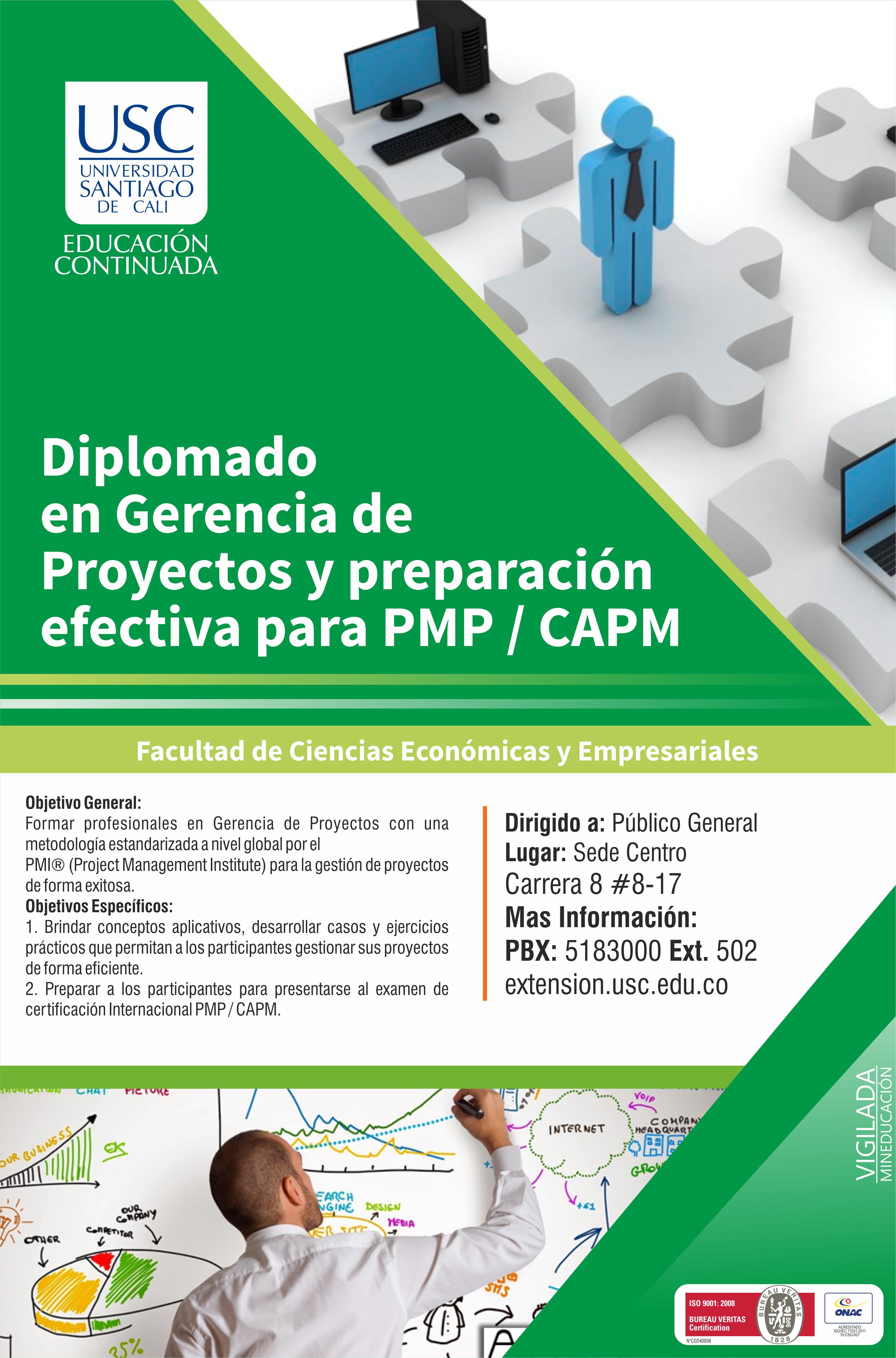 Diplomado Proyectos Pmi