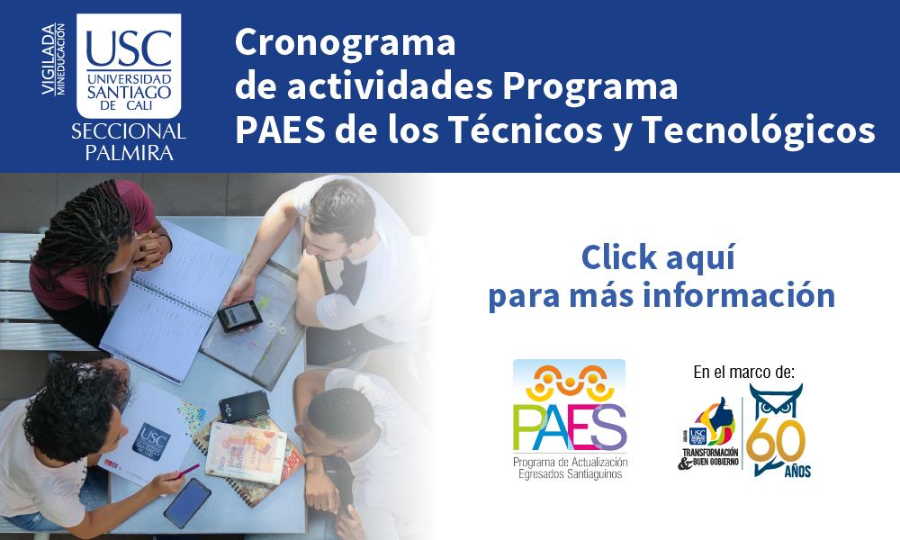 Cronograma De Actividades Programa PAES De Los T Y T 01