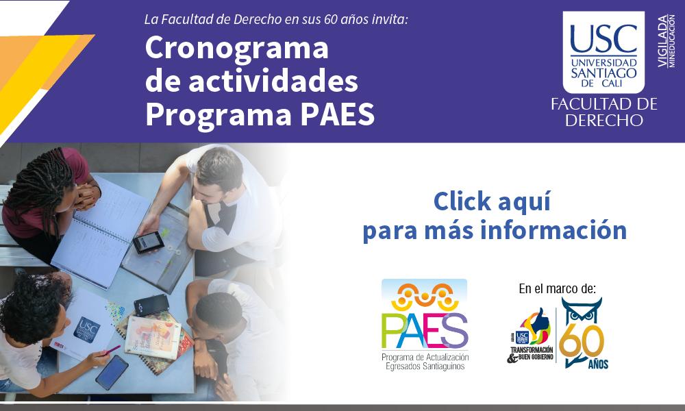 Cronograma De Actividades Programa PAES 01(1)
