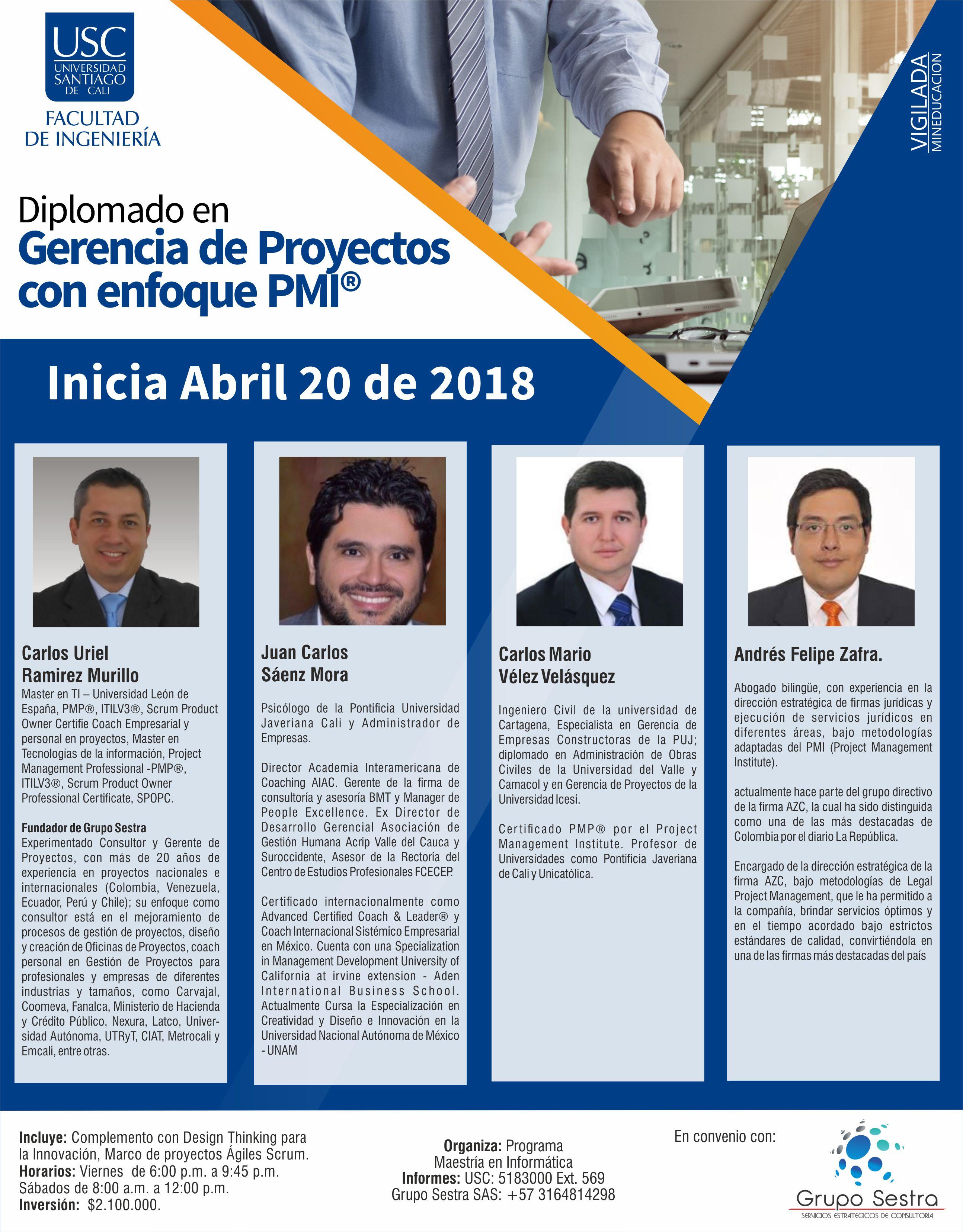 Gernecia De Proyectos PERFILES 1
