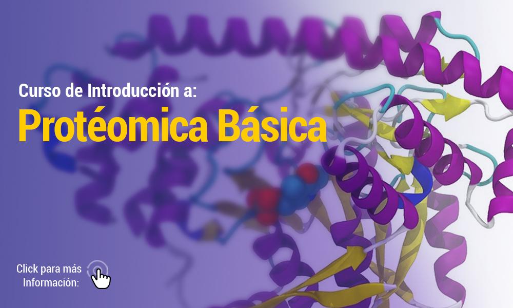 CURSO DE PROTOMICA BSICA   Para Web