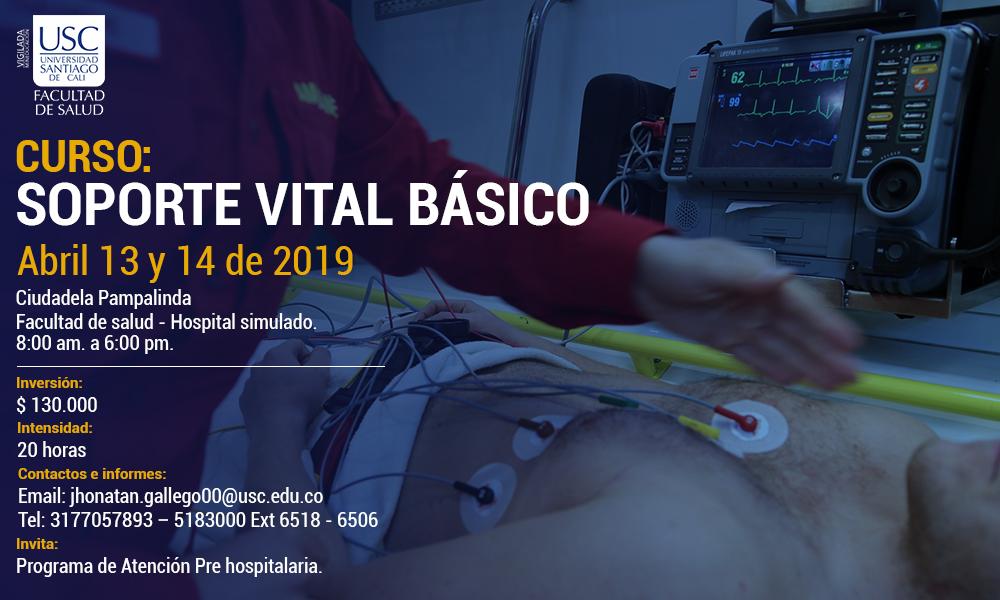 CURSO DE SOPORTE BSICO DE VIDA   Para Web